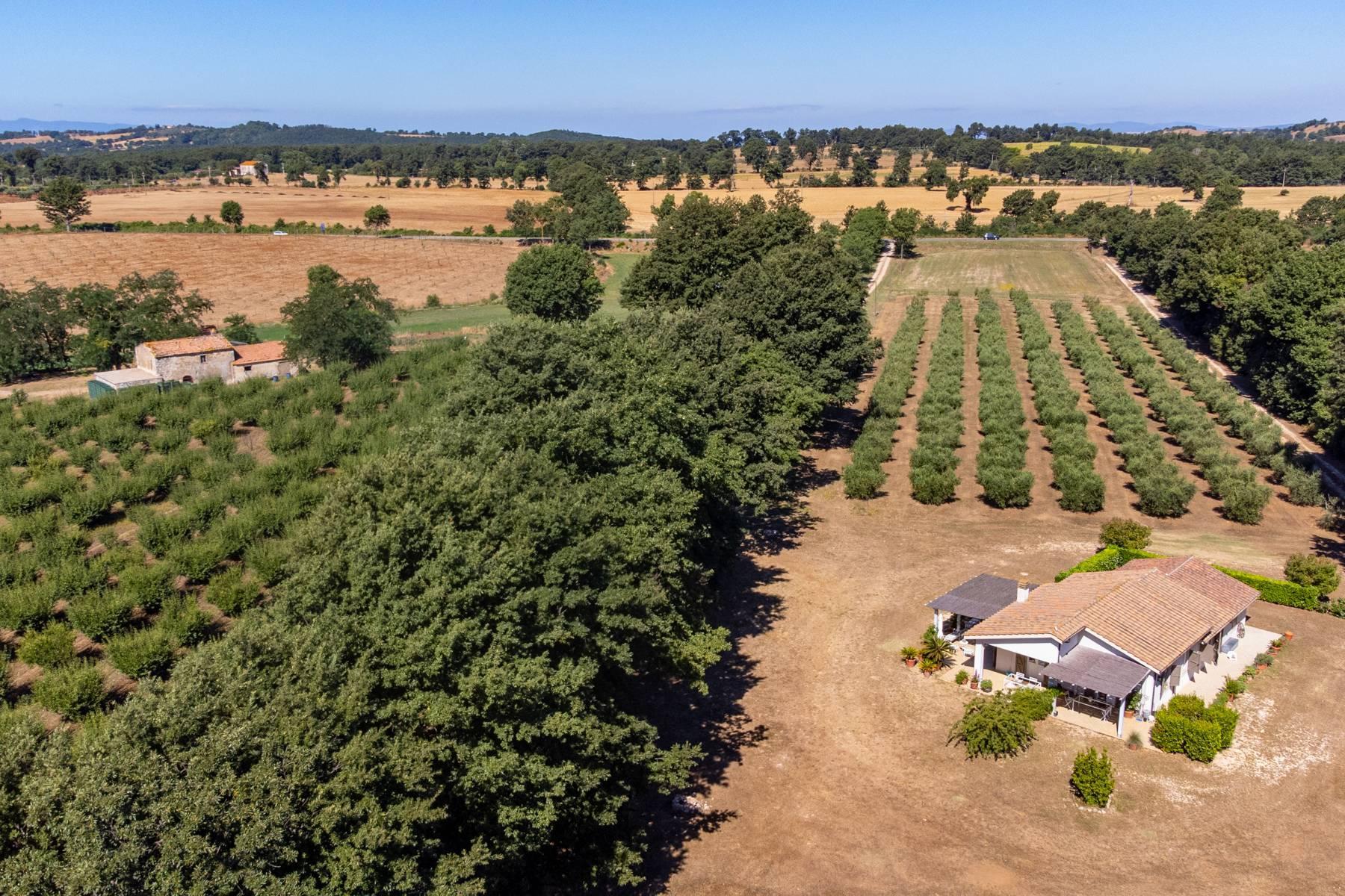 Wunderschönes Anwesen im Grünen, nur einen Steinwurf von Manciano entfernt - 3