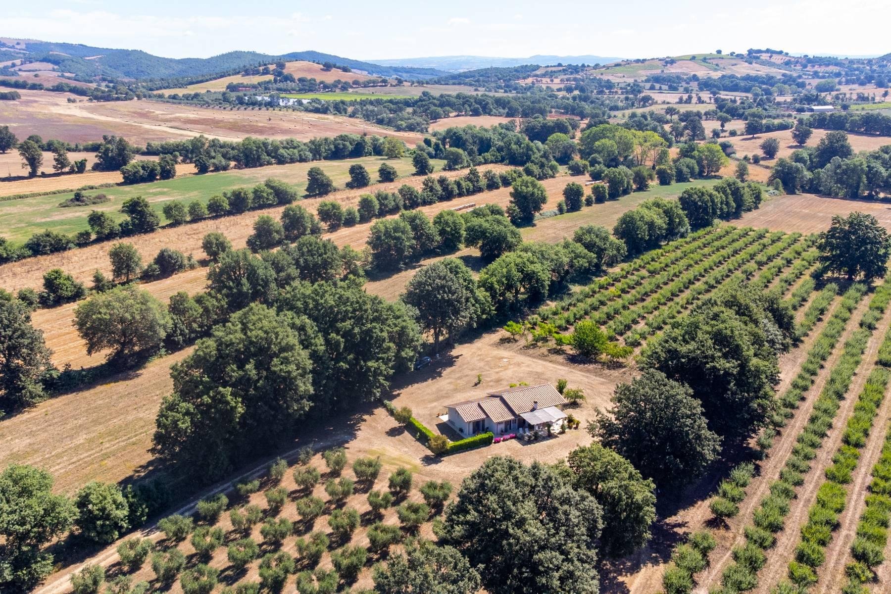 Wunderschönes Anwesen im Grünen, nur einen Steinwurf von Manciano entfernt - 5
