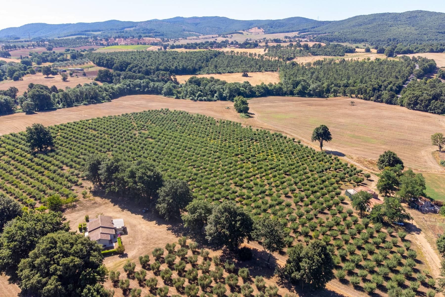 Wunderschönes Anwesen im Grünen, nur einen Steinwurf von Manciano entfernt - 25