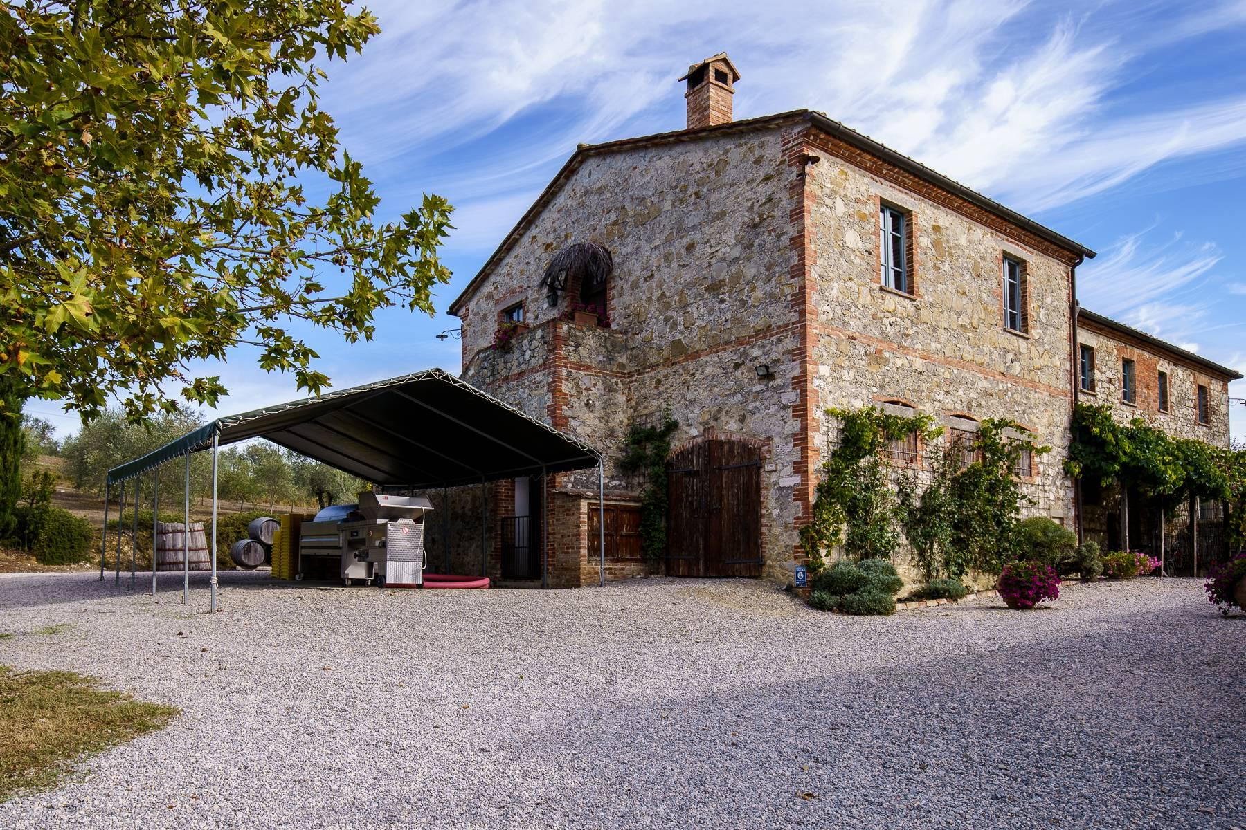 Organic winery in the heart of Crete Senesi - 3