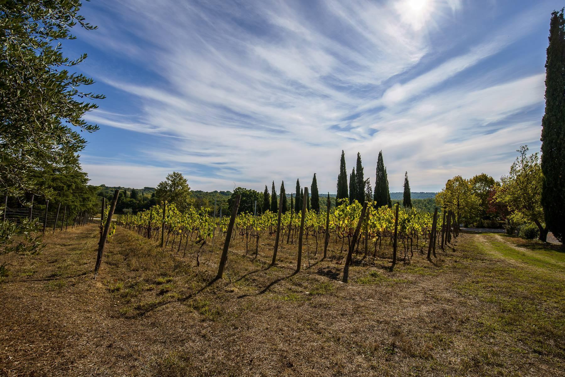 Organic winery in the heart of Crete Senesi - 8